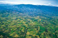 El altiplano de Tunja-Sogamoso presenta un extenso mosaico agrícola dedicado principalmente al cultivo de papa. Una estrategia de restauración del paisaje debería estar orientada a la recuperación de los bosques riparios y a la formación de corredores bio