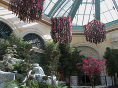 Las Vegas, NV   Bellagiou0027s Conservatory; 15,000 18,000 Visitoru0027s Per Day,  120