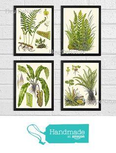 Botanical Set of 4 Prints Unframed Antique Beautiful Ferns Green Forest Nature Home Room Fern Decor Wall Art from LoveThePrint https://www.amazon.com/dp/B019FWVEWQ/ref=hnd_sw_r_pi_dp_vOa6xbA4N0D1M #handmadeatamazon