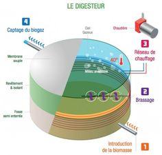 Biométhane : le digesteur