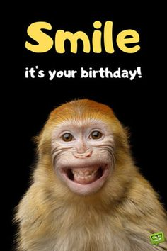 Funny Happy Birthday Images - Happy Birthday Funny - Funny Birthday meme - - Smile its your birthday! The post Funny Happy Birthday Images appeared first on Gag Dad. Happy Birthday Wishes For A Friend, Funny Happy Birthday Images, Happy Birthday For Him, Birthday Wishes Messages, Birthday Wishes Funny, Happy Birthday Greetings, Humor Birthday, Birthday Ideas, Your Birthday
