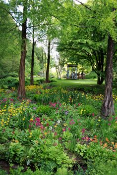 Looking towards the folly, Marwood Hill Gardens, Devon, May 2015