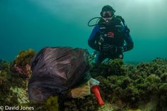 Why would someone just dump a whole bag of rubbish in the ocean?