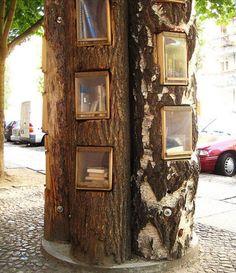 Treasure Tree Trunk