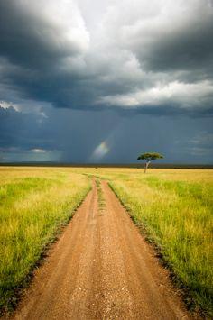 Masai Mara Reserve - Kenya