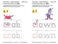 Decode CCVC Words: Lesson 6, Book 16 (Newitt Decoding Series)
