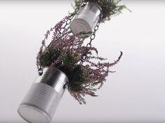 Blumenampel aus Konservendosen. Hier geht's zur Anleitung: https://www.toom-baumarkt.de/selbermachen/kreativwerkstatt/details/blumenampel-aus-konservendosen-3712/ #toom #Baumarkt #toomBaumarkt #toomTeam #Heimwerken #DIY