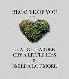Cannabis Positive Quotes-Because of you, I laugh harder, cry a little less & smile a lot more