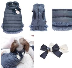 Designer Couture Dog Clothes- Small clothes for Little dogs