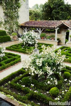 In the Cloister Garden of William Christie's 16th-century French countryside estate, the classic rose Katharina Zeimet stands out among the formal hedges. See more of this beautifully restored home »   - HouseBeautiful.com