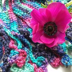 A pretty anemone and my new finished crochet scarf made from the leftovers of my #devonsunyarns #gallant #aran with #nep knitted hat making.  #floral #seekthesimplicity #crochetersofinstagram #crochetersofig #crochetersoftheworld #crochetaddict #crochetallthethings #instacrochet #prettyinpink #thatauthenticfeeling #myweekofslowliving #greenparlour #handmadewardrobe #handmadeloves #handmadecloset #handmadeaccessories #shopsmall #shopsmallbusiness by skeinheroine