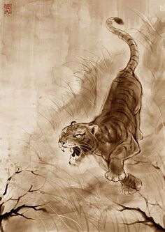 Tiger by artupida