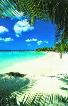 Honeymoon in Aruba..