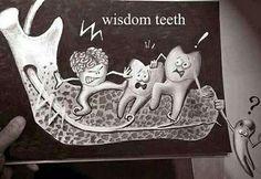 """Os 3os molares, chamados popularmente de """"dentes do ciso"""", nem sempre precisam ser extraídos. Porém, quando estão mal posicionados ou quando empurram os demais, não há como escapar. A boa notícia é que a cirurgia costuma ser tranquila, desde que feita por um cirurgião experiente."""