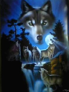 Photo Wolfmoon O1bdyyyb Gif Beautiful Pictures Wolf Animals And Animal Wallpaper