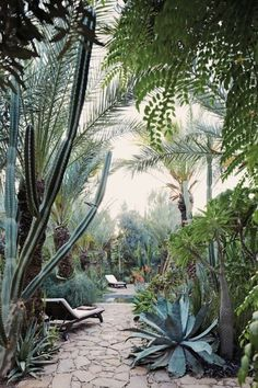 Moorten Botanical Garden, 1701 S Palm Canyon Dr, Palm Springs, CA 92264, USA