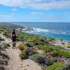 Super excited...my recent #KangarooIslandWildernessTrail hike was featured on a round up of multi-day hikes around Australia & New Zealand on @thenorthfaceu_aunz blog.  Check it out and find out how you can win some multi-day hiking gear by sharing your adventures with #TNFOutOfOffice.  http://bit.ly/2GDha3S  Kangaroo Island Wilderness Trail is one of Australia's newest multi-day hikes. Over Australia Day week in January @joebara89 and I saw kangaroos koalas seals and so much more. But what…