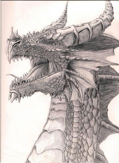 Pencil Art Drawings, Art Drawings Sketches, Cool Drawings, Animal Sketches, Animal Drawings, Dragons Tumblr, Dragon Artwork, Dragon Drawings, Dragon Head Drawing