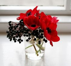 Black pods and red flowers