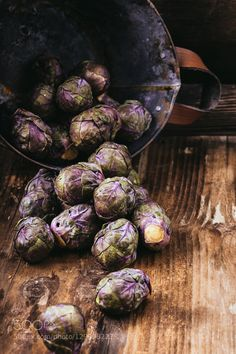 Pic: Violet sprouts