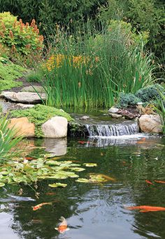 Check out this article on water features in Susquehanna Style featuring C.E. Pontz Sons very own Adrian Kapp!