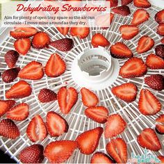 Dehydrating Strawberries - filling the trays How to Dehydrate Strawberries - Hints and Tips for Perfect Dried Berries - simple and easy ways to make homemade dried fruit for snacking and baking. Dehydrated Strawberries, Freezing Strawberries, Dehydrated Food, Strawberry Filling, Strawberry Recipes, Dried Berries, Dehydrator Recipes, Skinny Recipes, Vegan Recipes