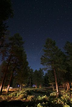 Bryce Canyon, Utah. On a moonless night, you can see almost 7,500 stars across various constellations. Each summer, Bryce Canyon National Park hosts a star-gazing weekend with over 50 telescopes.