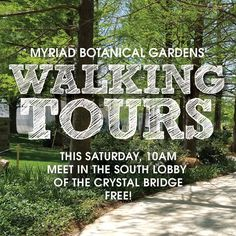Myriad Botanical Gardens – Welcome to the Oklahoma City Myriad Botanical Gardens & Crystal Bridge Myriad Botanical Gardens, Walking Tour, Tours, Crystals, City, Crystals Minerals, Cities, Crystal