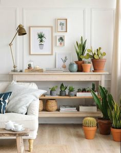 Composiciones de plantas 9 ideas