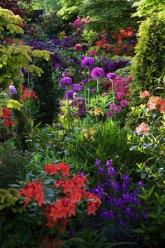 Wow! Gorgeous...pinks and purples and the lime greens in the plants and flowers work so well together...