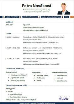 curriculum vitae vzor doc