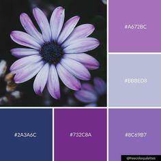 Purple Power | Flower | Nature |Color Palette Inspiration. | Digital Art Palette And Brand Color Palette. Purple Color Schemes, Purple Color Palettes, Nature Color Palette, Blue Palette, Colour Pallette, Color Combos, Color Psychology, Color Studies, Colour Board