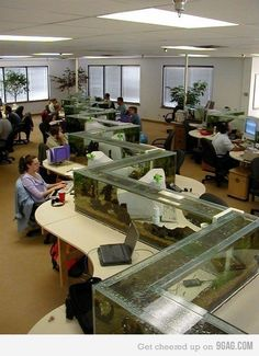 Aquarium Design, Home Aquarium, Aquarium Fish Tank, Big Aquarium, Aquarium Ideas, Aquariums Super, Amazing Aquariums, Tanked Aquariums, Conception Aquarium