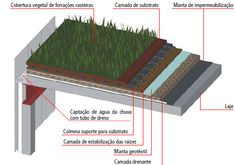 PARQUES SUSTENTÁVEIS - Sustainable Urban Parks - Parques Urbanos Sostenibles - 持続可能な都市公園: Coberturas verdes: frescor e alimento