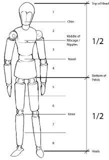mannequin proportions | Figure drawing resources | Pinterest