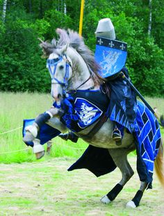 Medieval tournament at Raseborg Castle Ruins in Finland Medieval Horse, Medieval Knight, Medieval Armor, Medieval Fantasy, Knight In Shining Armor, Knight Armor, Horse Caballo, Horse Costumes, Templer