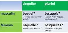 Français langue étrangère: LEQUEL/LESQUELS  LAQUELLE...