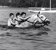 swimming on horseback.I used to do this with my horse, Pet, all the time. Pretty Horses, Horse Love, Beautiful Horses, Horse Photos, Horse Pictures, Snowman Horse, All About Horses, Show Jumping, Horse Art