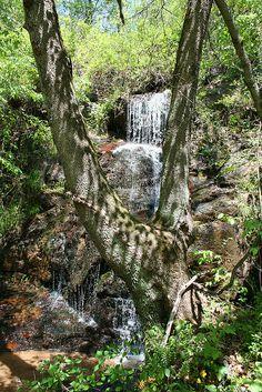 Hidden waterfall, near Wilson Creek