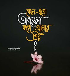 Bangla Love Quotes, Love Quotes Photos, 8k Wallpaper, Durga Maa, Good Morning Flowers, Captions, Art Photography, Typography, Butterfly