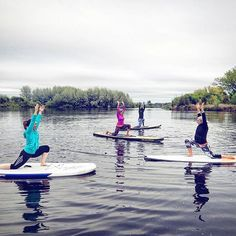 Started our morning saluting the sunrise (hiding behind the clouds!) ☁🌞 another fun SUP Yoga sesh this morning! Sup Yoga, Surfboard, Sunrise, Clouds, Fun, Surfboards, Sunrises, Surfboard Table, Cloud