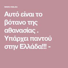 Αυτό είναι το βότανο της αθανασίας . Υπάρχει παντού στην Ελλάδα!!! - Storage, Purse Storage, Larger, Store