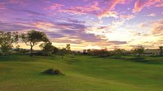 Golf in Living Color