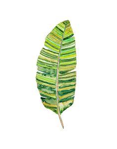 Tropical Leaf by SnoogsAndWilde