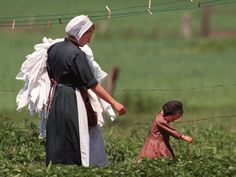 An Amish woman takes down her laundry from a clothesline. Because the Amish do not use machines, work like this is done by hand.