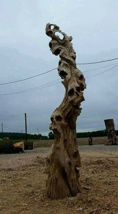 Lost souls tree*