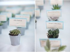 Succulent favors that double as escort cards / A Bald Head Island Real Wedding Photographed by KMI Photography / aqua, pink, and lavender details / via StyleUnveiled.com