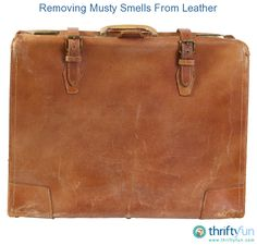 This guide is about removing musty smells from leather. Mold and mildew can create strong odors when given a chance to grow.