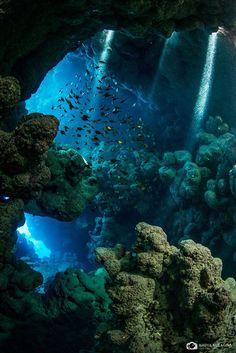 Deep under the sea