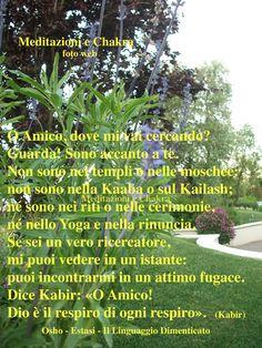 http://www.ilgiardinodeilibri.it/libri/__estasi-il-linguaggio-dimenticato.php?pn=4319